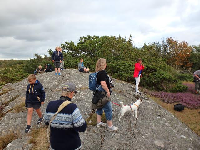 Här lyssnar vi till historien om hur Ronja Rövardotters berömda vårskrik spelades in på Hallands Väderö - Foto: Belinda Graham